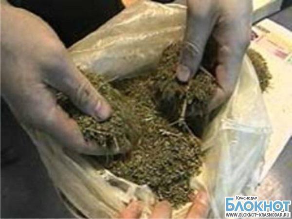 В Краснодаре молодая семья организовала наркобизнес