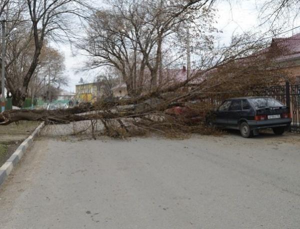 В Армавире ураганный ветер оборвал линии электропередач