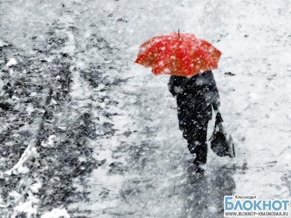 В Краснодаре прогнозируют сильные морозы