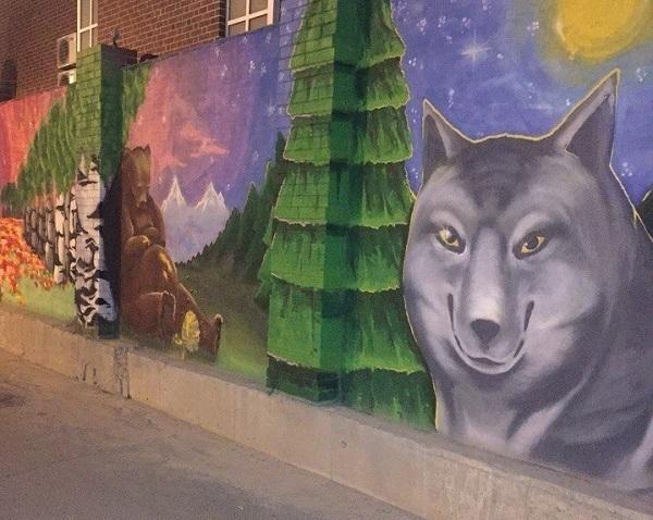 В Краснодаре изображенный на заборе волк стал интернет-мемом