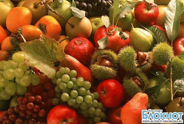 Краснодарский край поставляет 50% фруктов и ягод на отечественный рынок