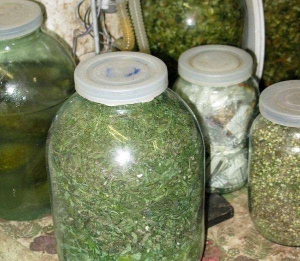 На Кубани 55-летний наркоман пытался спрятать около пяти килограммов марихуаны