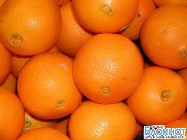 Туапсе: апельсины отдельно, мухи отдельно