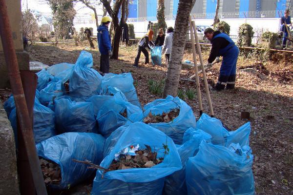 Волонтеры Сочи протестуют: «Нам надоело убирать ваш мусор»