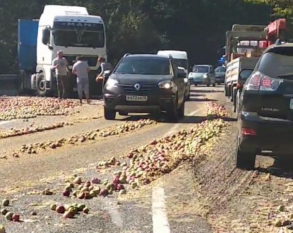 Вот это компот: тонны яблок засыпали дорогу под Горячим Ключом
