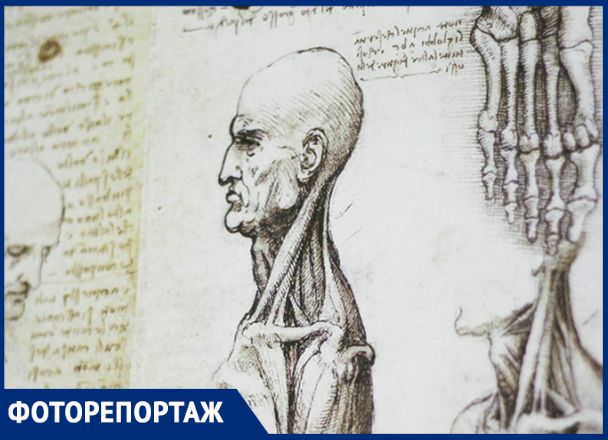 Культовые изобретения Да Винчи в Краснодаре в объективе фотографа