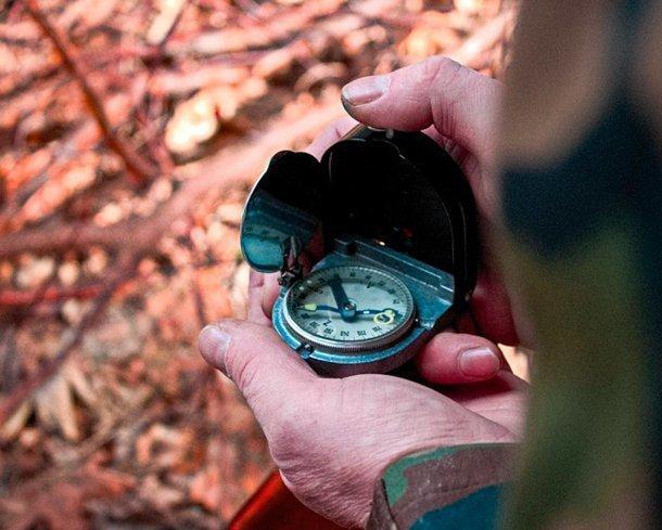 Трое грибников заблудились в лесу в Сочи