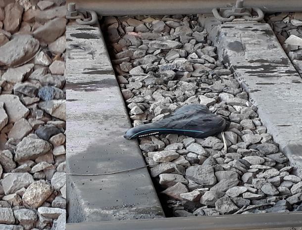 Поезд насмерть сбил 25-летнего велосипедиста в Краснодаре