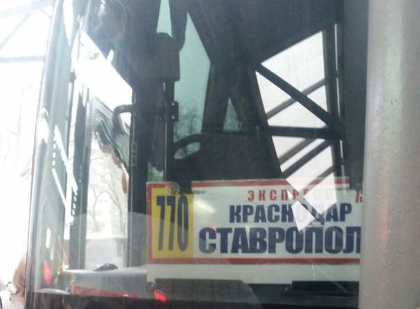 Добрые краснодарцы вернули «потеряшку» домой к маме в Ставропольский край