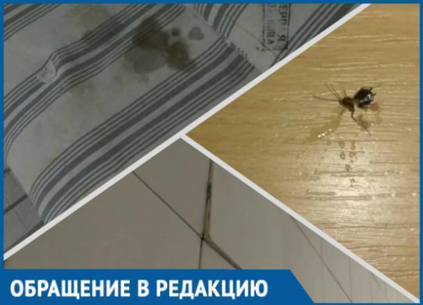 Грязные матрасы, тараканы и отваливающаяся плитка: так встречает беременных краснодарская больница