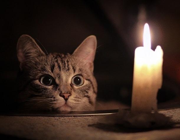 Без света на 2 дня останутся 12 тысяч жителей Новороссийска