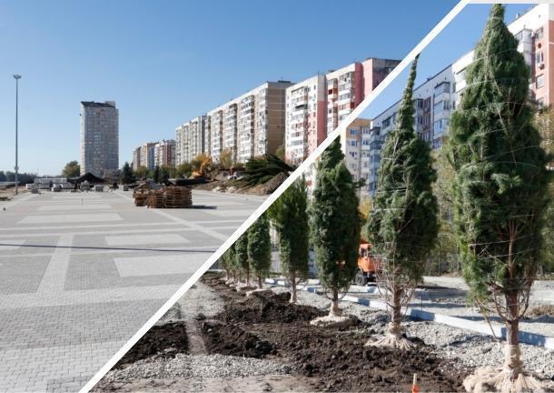 В Юбилейном микрорайоне Краснодара в декабре появится новая аллея