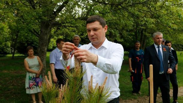 Мэр предложил краснодарцам самим озеленять город