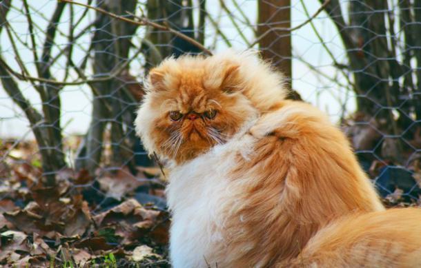 Ветреный вторник ожидает всех жителей Краснодарского края
