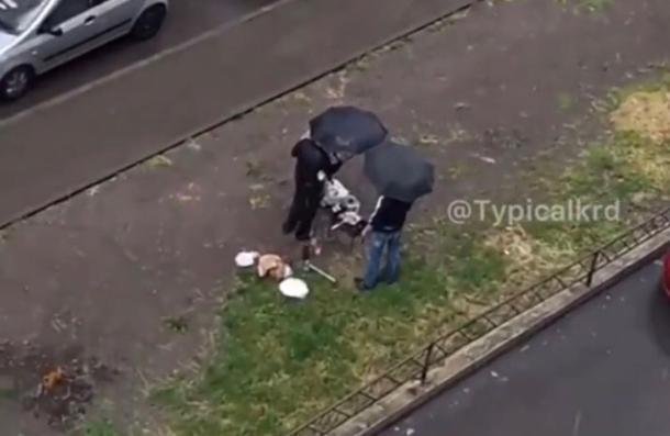Краснодарцы, жарящие шашлык в дождь под зонтами, попали на видео