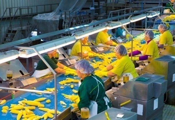 На Кубани намерены создать 39 тысяч новых рабочих мест
