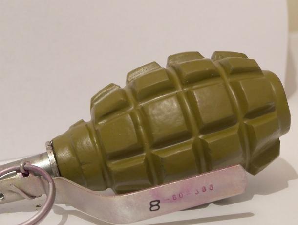 В Анапе обезвредили две гранаты времен Великой Отечественной войны