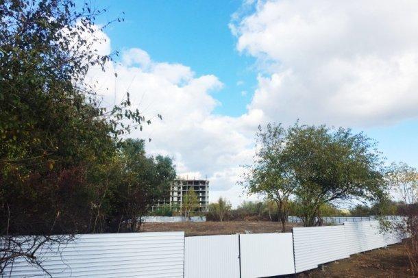 В Краснодаре остановили стройку, где рабочие незаконно срубили 39 деревьев