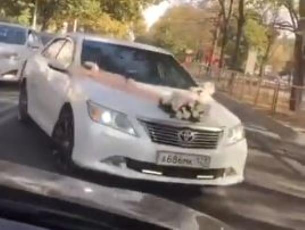 В Краснодаре свадебный кортеж промчался по «встречке»