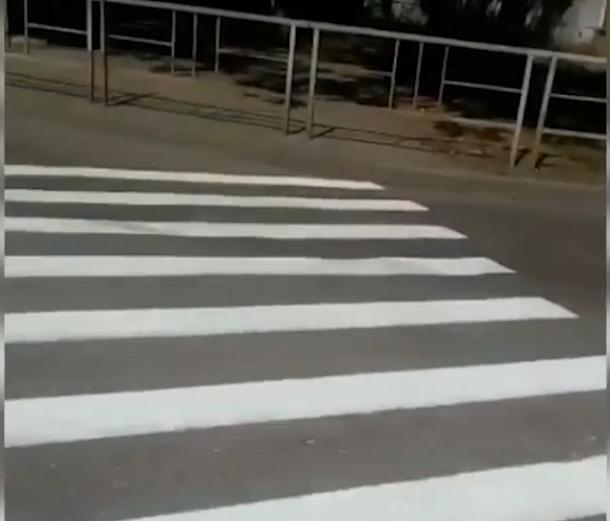 Пешеходный переход не для людей появился в Краснодаре