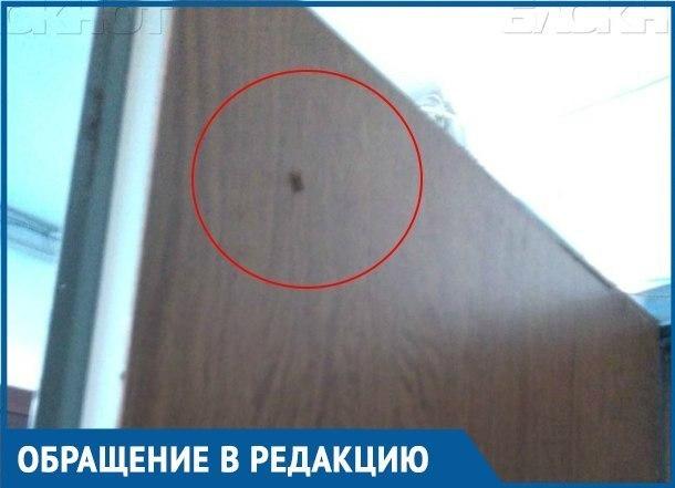 Вместе с ветераном ВОВ по соседству живут тараканы и ужасный запах в Краснодаре