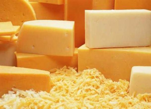 НаКубани появится новый завод попроизводству сыров