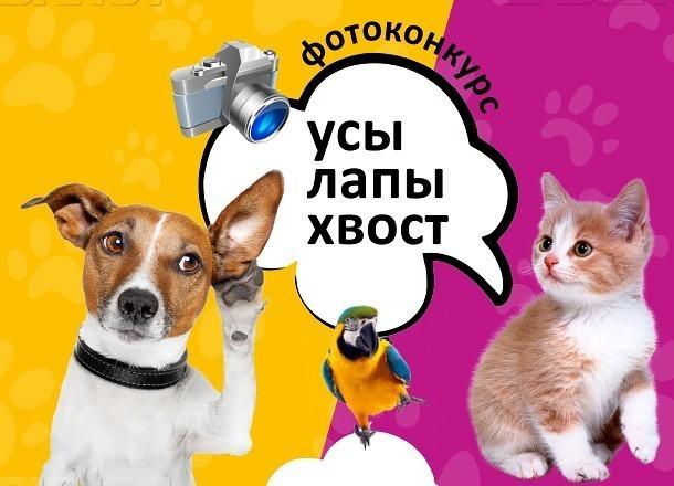 КОНКУРС: Поделись снимками  питомца и выиграй подарки от ЗВЕРЕМАРКЕТ.РУ