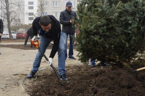 Мэр Первышов посадил несколько деревьев под Краснодаром