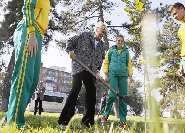 В Краснодаре появилась аллея Олимпийской славы