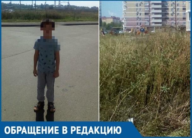 Из-за огромного поля амброзии возле дома ребенок едва не задохнулся в Краснодаре