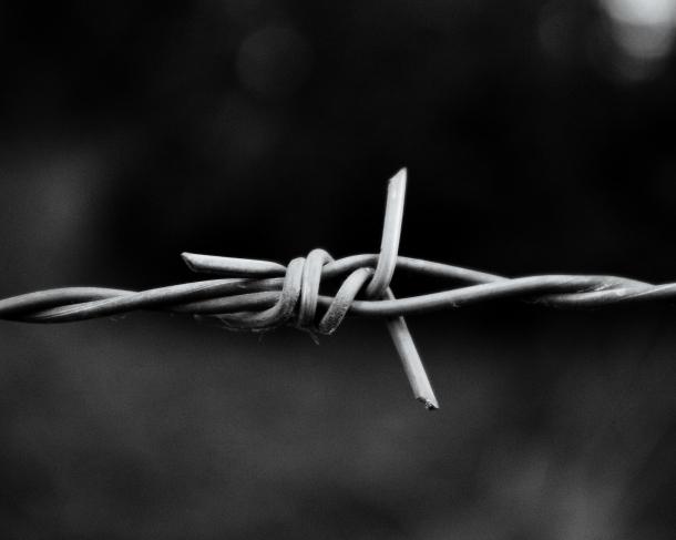 «Снова вСССР»: защитники прав человека  требуют признать госизменщиц изСочи политзаключенными