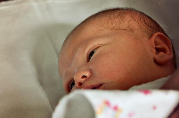 Ежегодная неделя против абортов стартовала на Кубани
