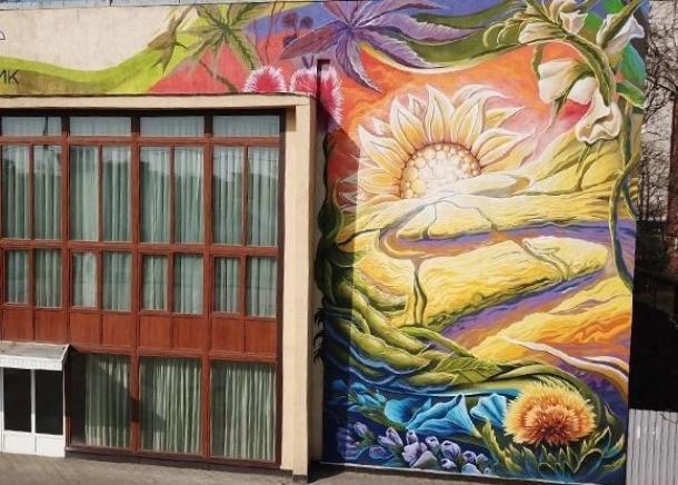 Сельскохозяйственное граффити появилось в Краснодаре
