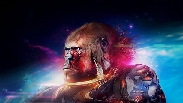 В Сочи стартовала подготовка космических обезьян