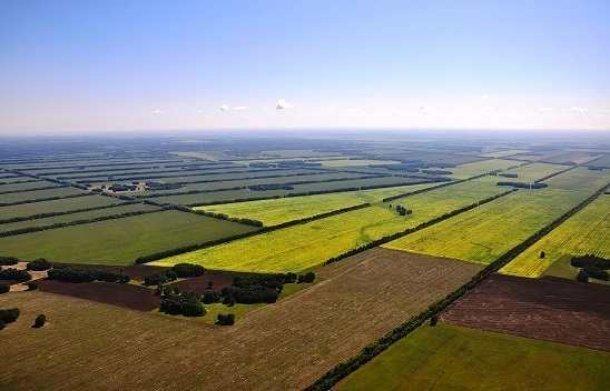 «Агрокомплекс» вернул кубанским фермерам их законные земли