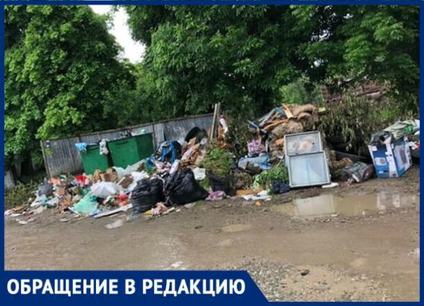 «Люди — свиньи», - краснодарка о соседях, превративших мусорную площадку в свалку