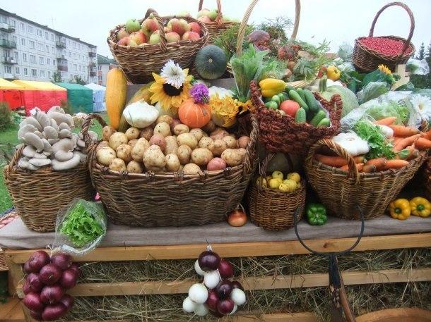 На Кубань вернулись ярмарки выходного дня