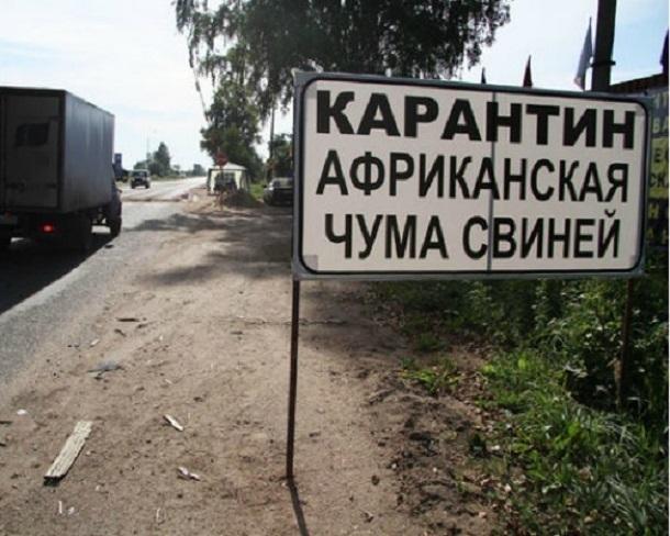 Россельхознадзор: власти Кубани сражаются сАЧС только формально