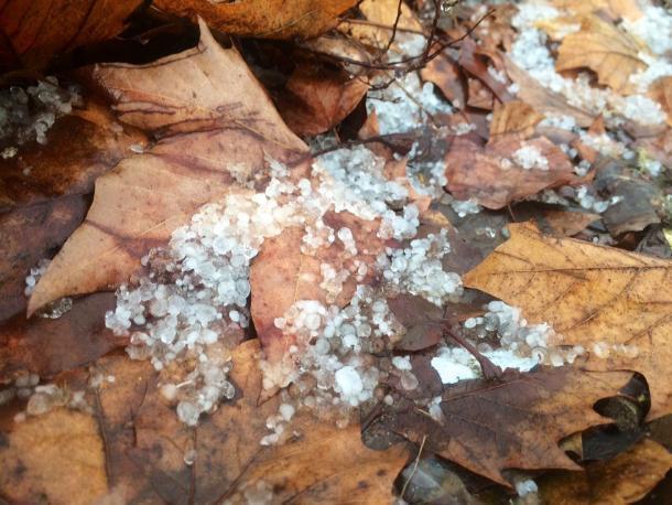 На Кубани объявили экстренное предупреждение по заморозкам