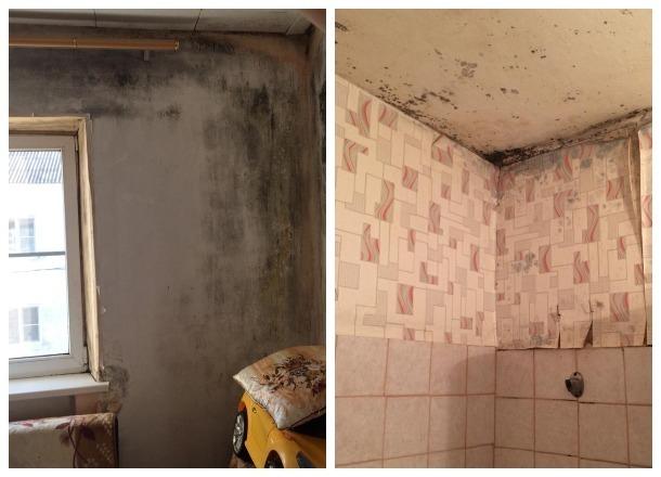 Следком Кубани опубликовал фотографии квартир детей-сирот Усть-Лабинского района