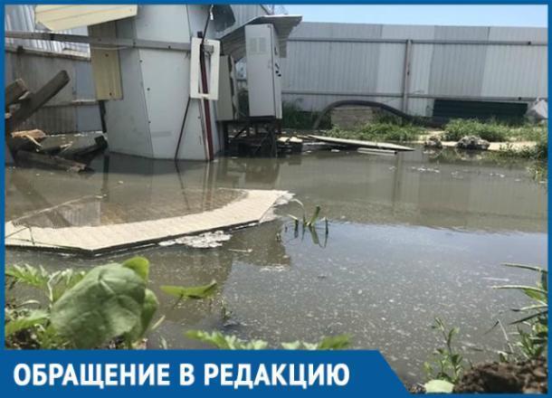 Краснодарцы бьют тревогу: Гидрострой находится на грани экологической катастрофы
