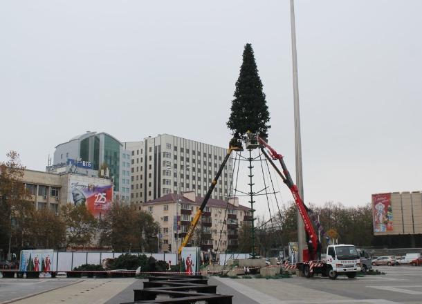 В Краснодаре начали установку главной городской елки