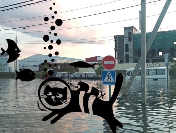 В Краснодаре создадут службу по откачке воды с улиц и прочистке ливневки