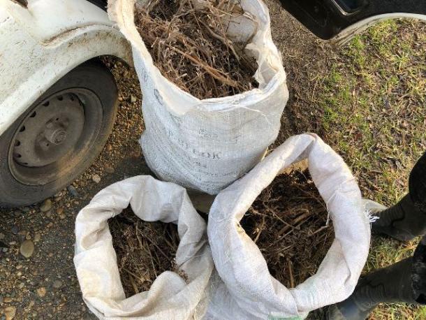 Мужчину поймали с тремя мешками «травы» на Кубани