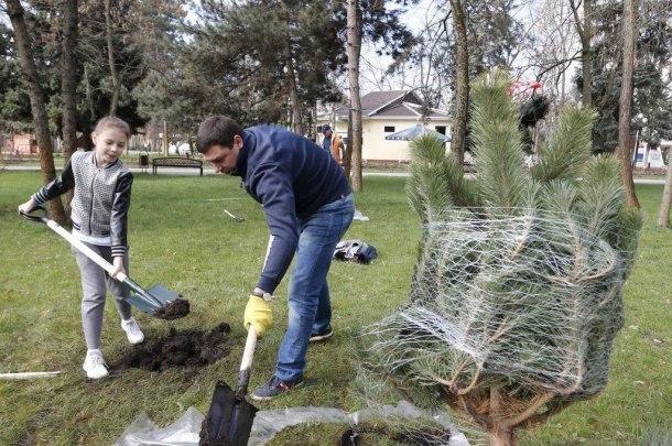 Мэр Краснодара вместе с вице-губернаторами посадил деревья в «Городском саду»