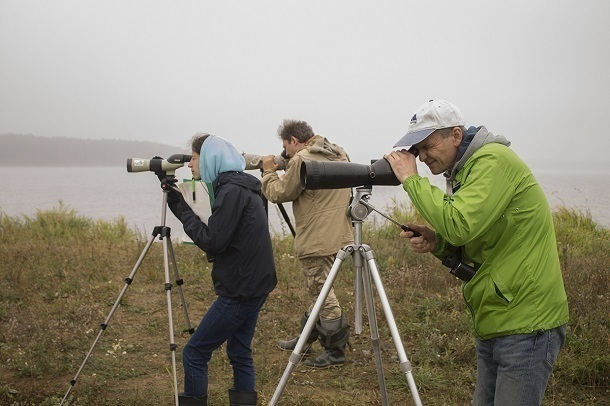 Граждане СВАО примут участие вучете зимующих водоплавающих птиц