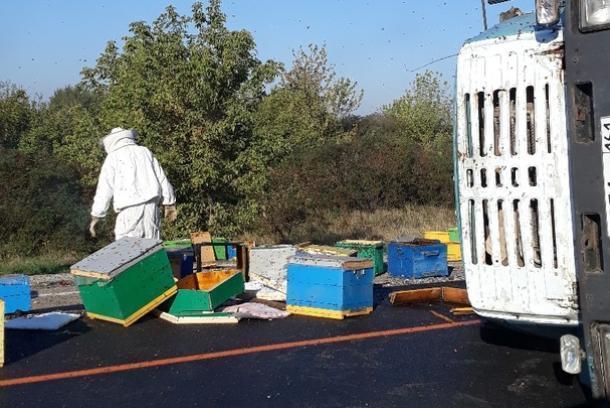«Свободу пчелам»: грузовик с ульями перевернулся под Горячим Ключом