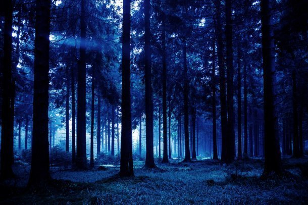 ВОрлиных скалах ночью искали заблудившуюся туристку