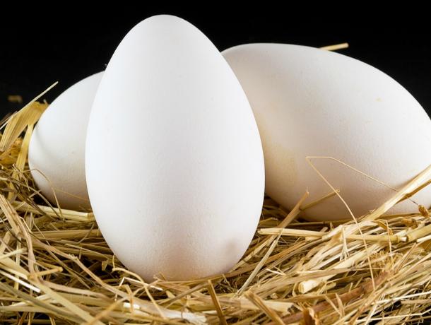 Роспотребнадзор предупредил кубанцев об опасных яйцах