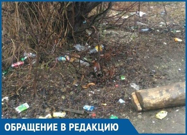В Краснодаре убрали только половину самой грязной зеленой зоны в городе
